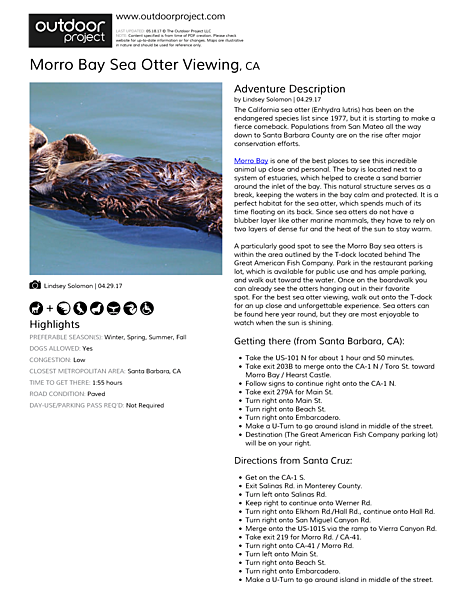 Morro Bay Sea Otter Viewing Field Guide