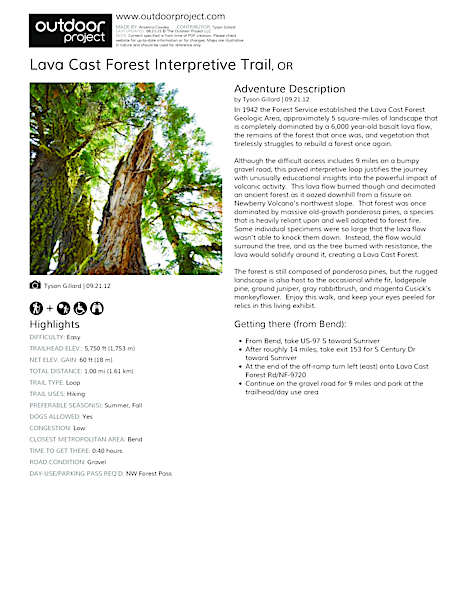 Lava Cast Forest Interpretive Trail Field Guide