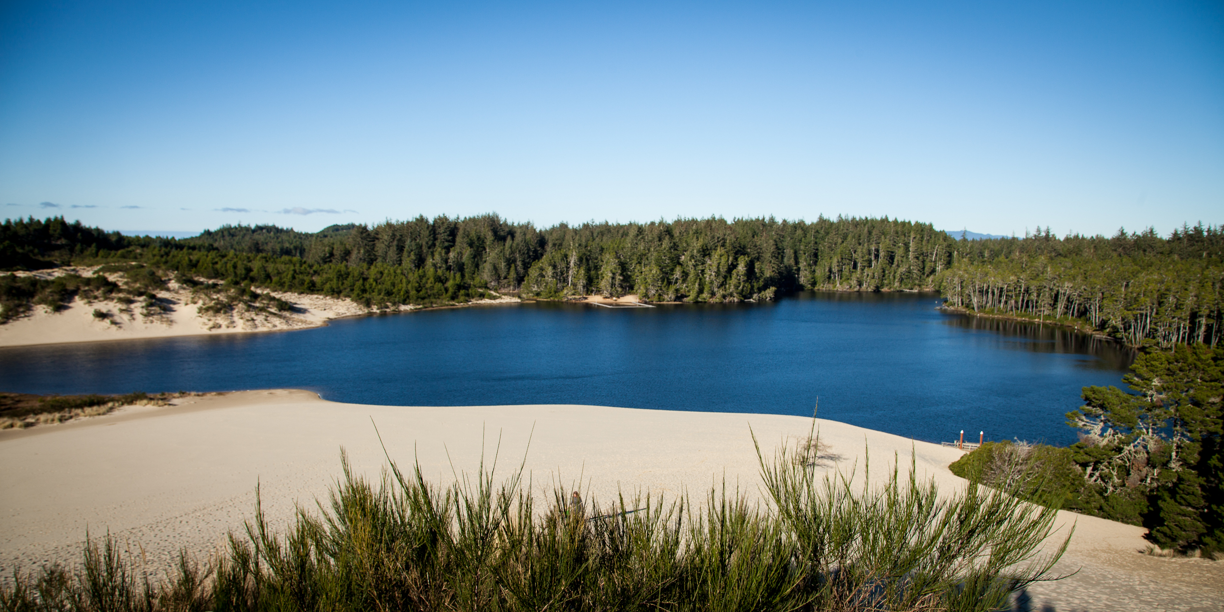 ocean lakes campground map with Honeyman State Park on Top 37 Most Beautiful Mountains further Cumberland River Holiday Park furthermore Attraction Review G32265 D278955 Reviews Lake Gregory Regional Park Crestline California furthermore Honeyman State Park also Ocean Lakes.