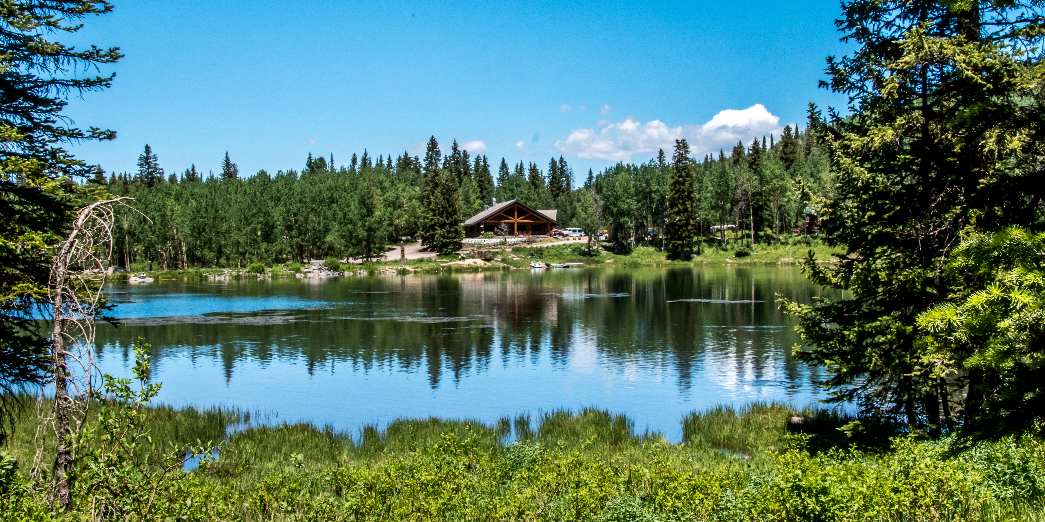 Mesa lakes lodge grand mesa national forest lodging in for Colorado fishing lodges