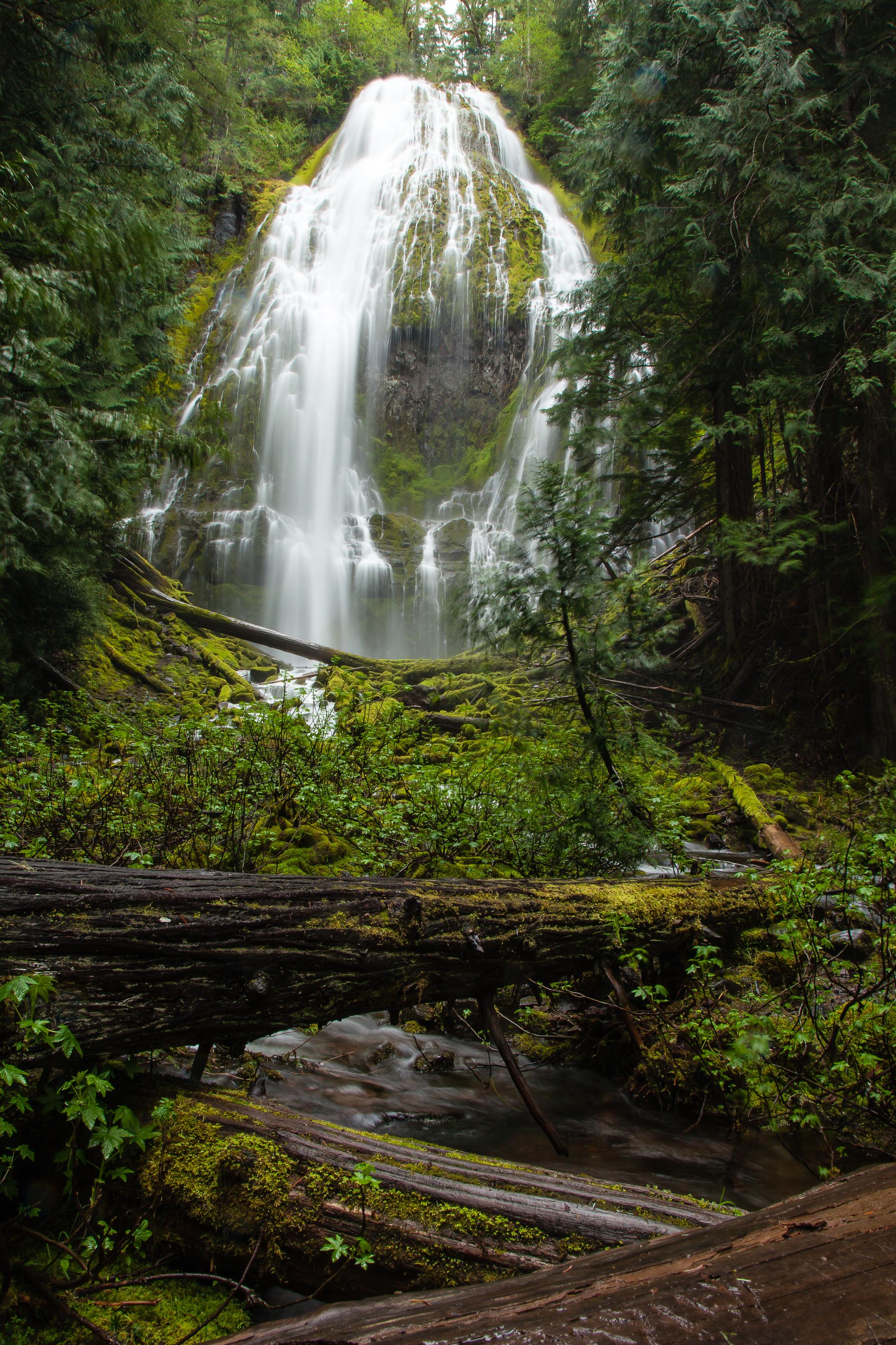 Proxy Falls Hiking Loop Hiking In Oregon