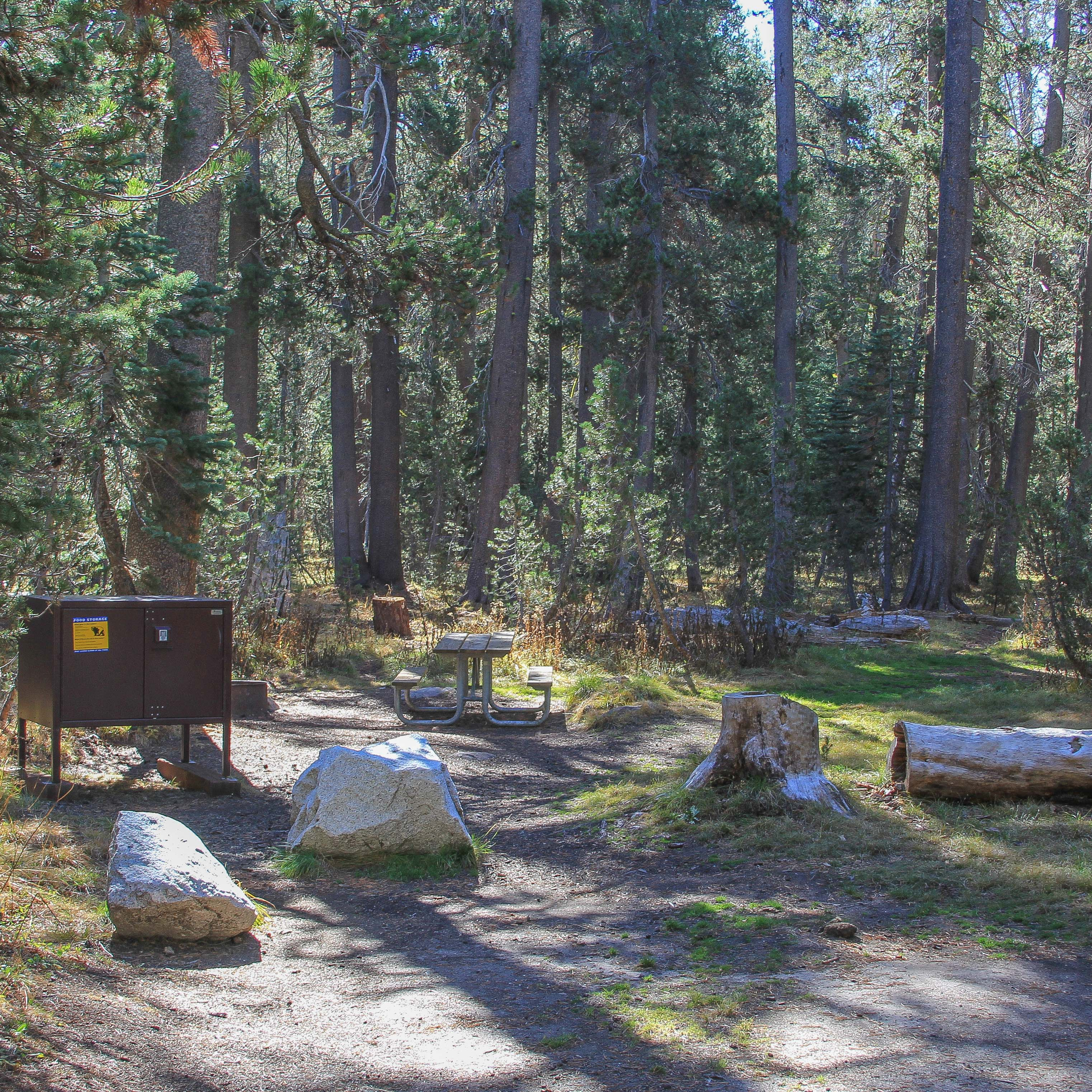 White wolf campground yosemite national park camping for Cabins inside yosemite national park