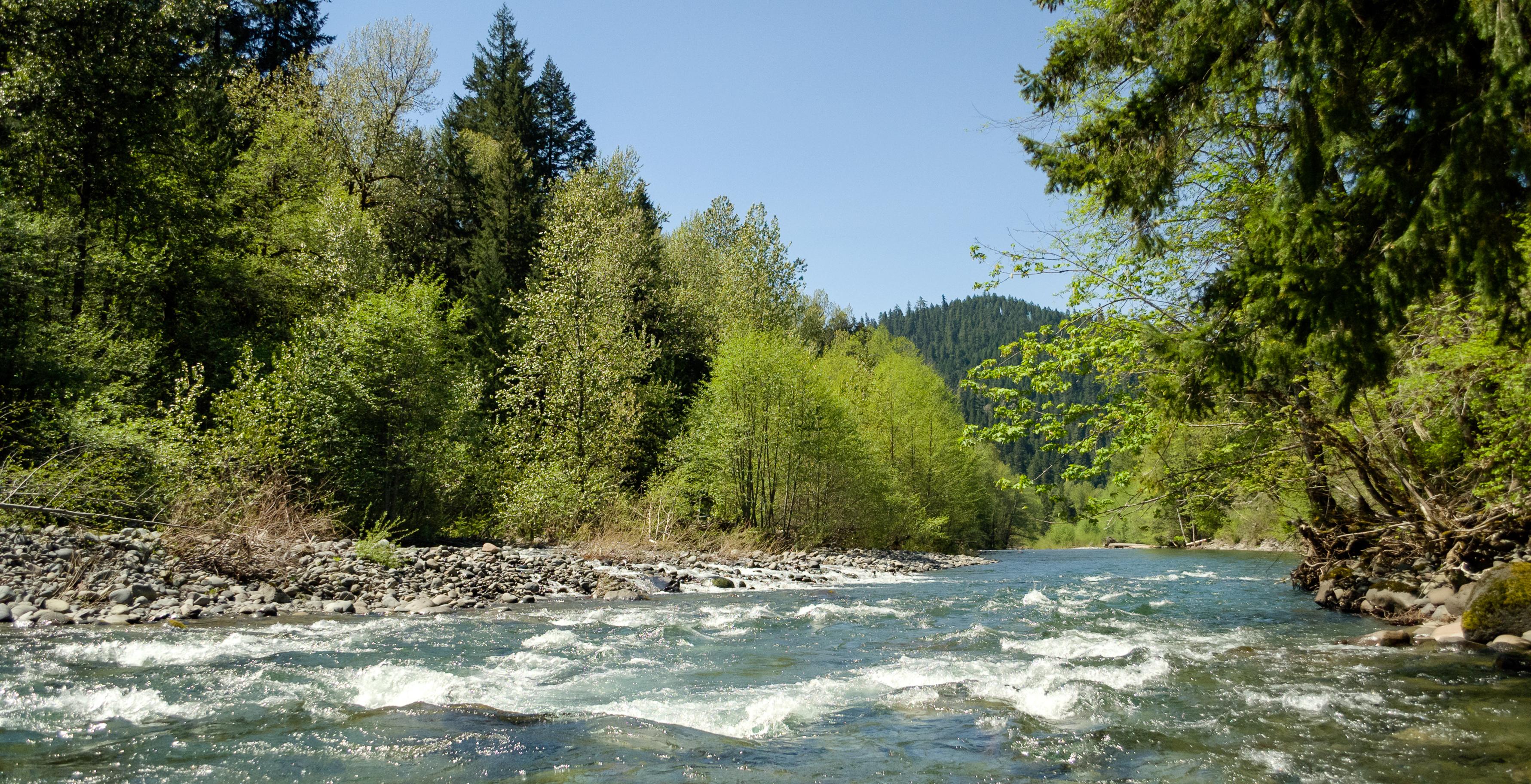 Willamette National Forest, OR - Recreation.gov
