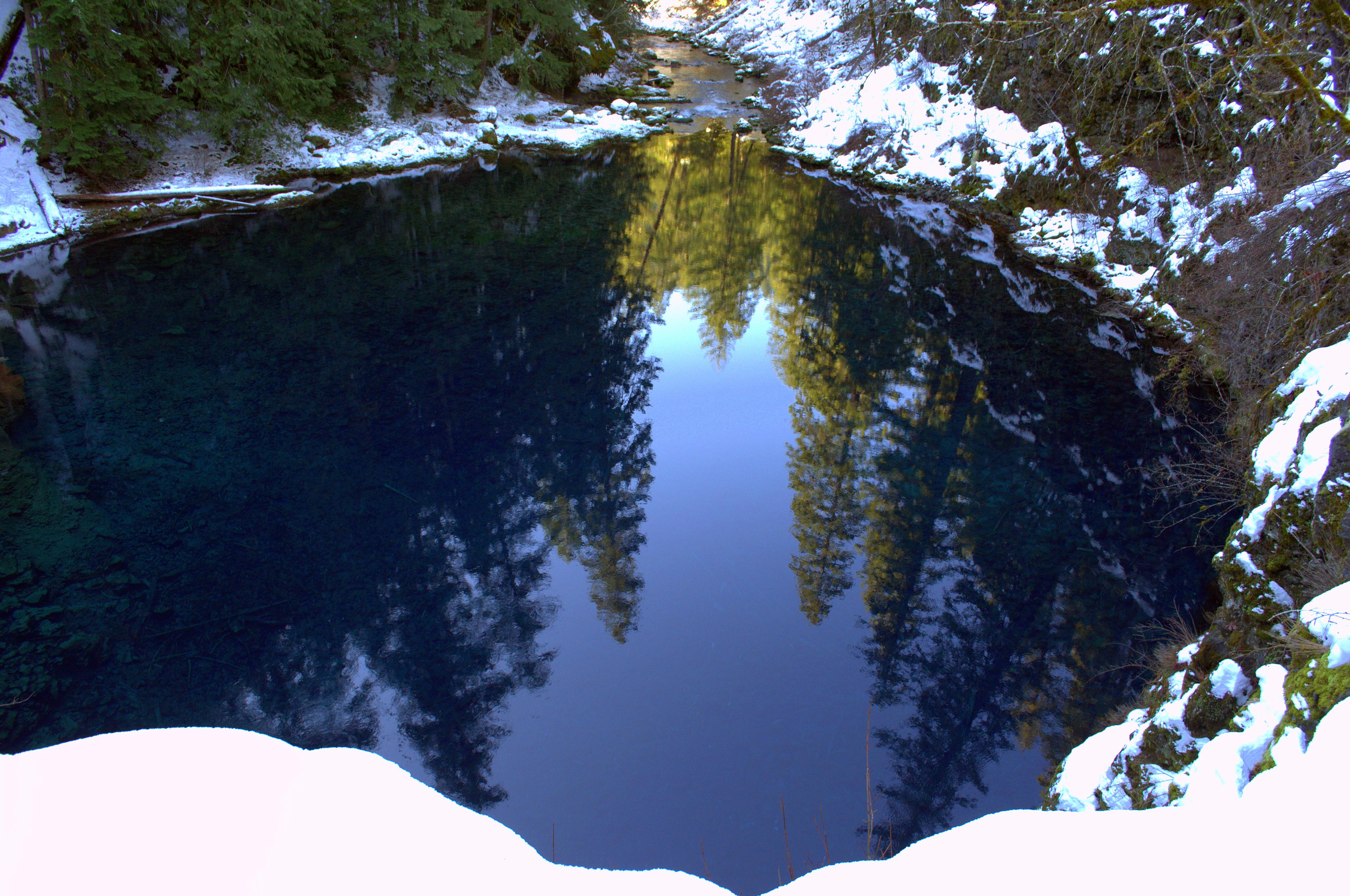 Mckenzie River Trail Trail Bridge To Tamolitch Pool Willamette National Forest Hiking In Oregon