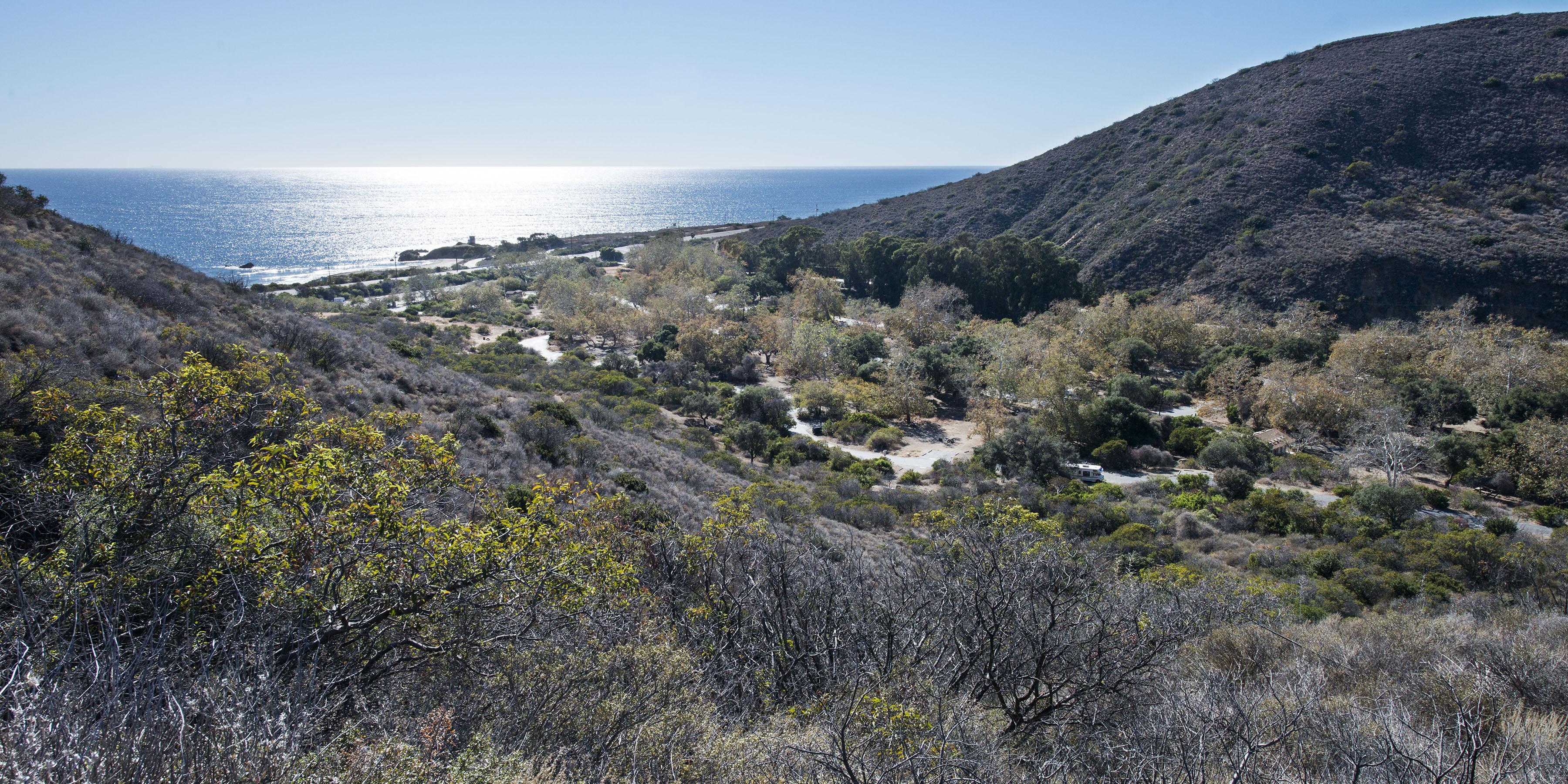 Leo Carrillo State Park Campground Malibu Camping In
