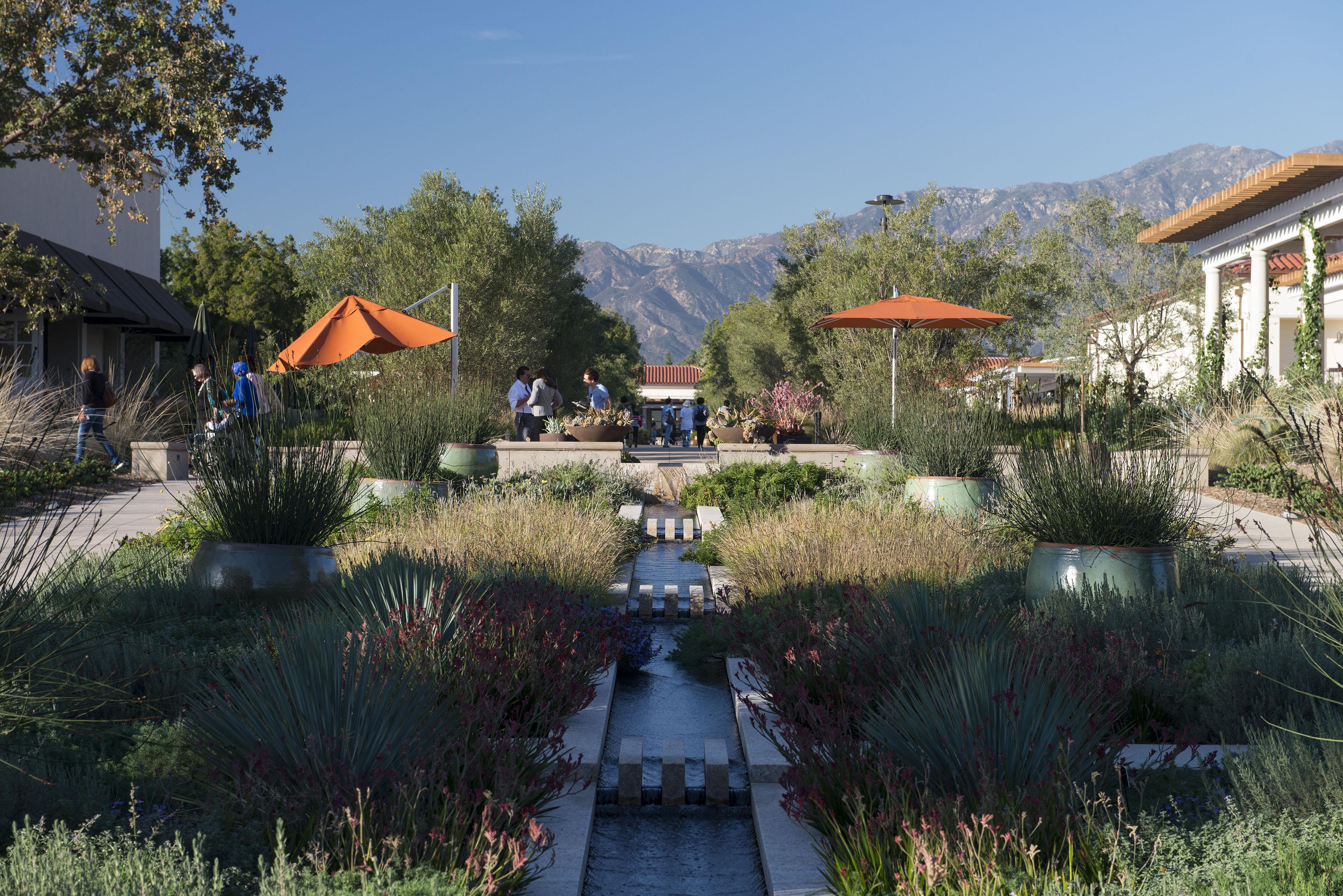 Huntington Botanical Gardens Pasadena Los Angeles California