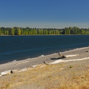 Collins Beach, Sauvie Island, Portland Metro Area, Outdoor Project
