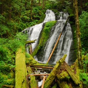 Siouxon Creek Hike, Washington, Outdoor Project