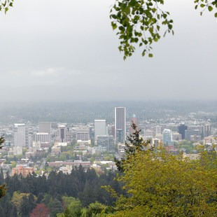 Forest Park, Pittock Mansion/Upper Macleay Trail, Portland Metro Area, Outdoor Project