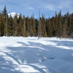Enid Lake Ski + Snowshoe Loop Trail, Oregon, Outdoor Project