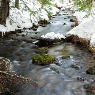 Pocket Creek, Oregon, Outdoor Project