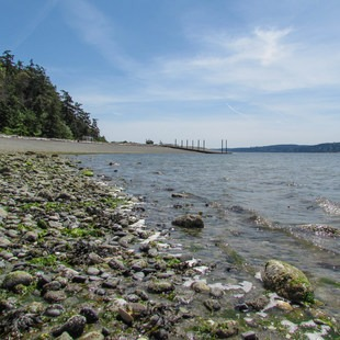 Camano Island State Park, Washington, Outdoor Project