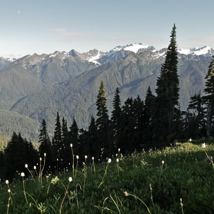 Olympic National Park, Washington, Outdoor Project