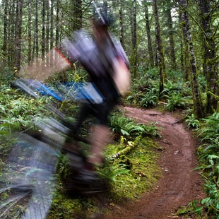 Carpenter Bypass Trail System, Whypass Trail, Oregon, Outdoor Project