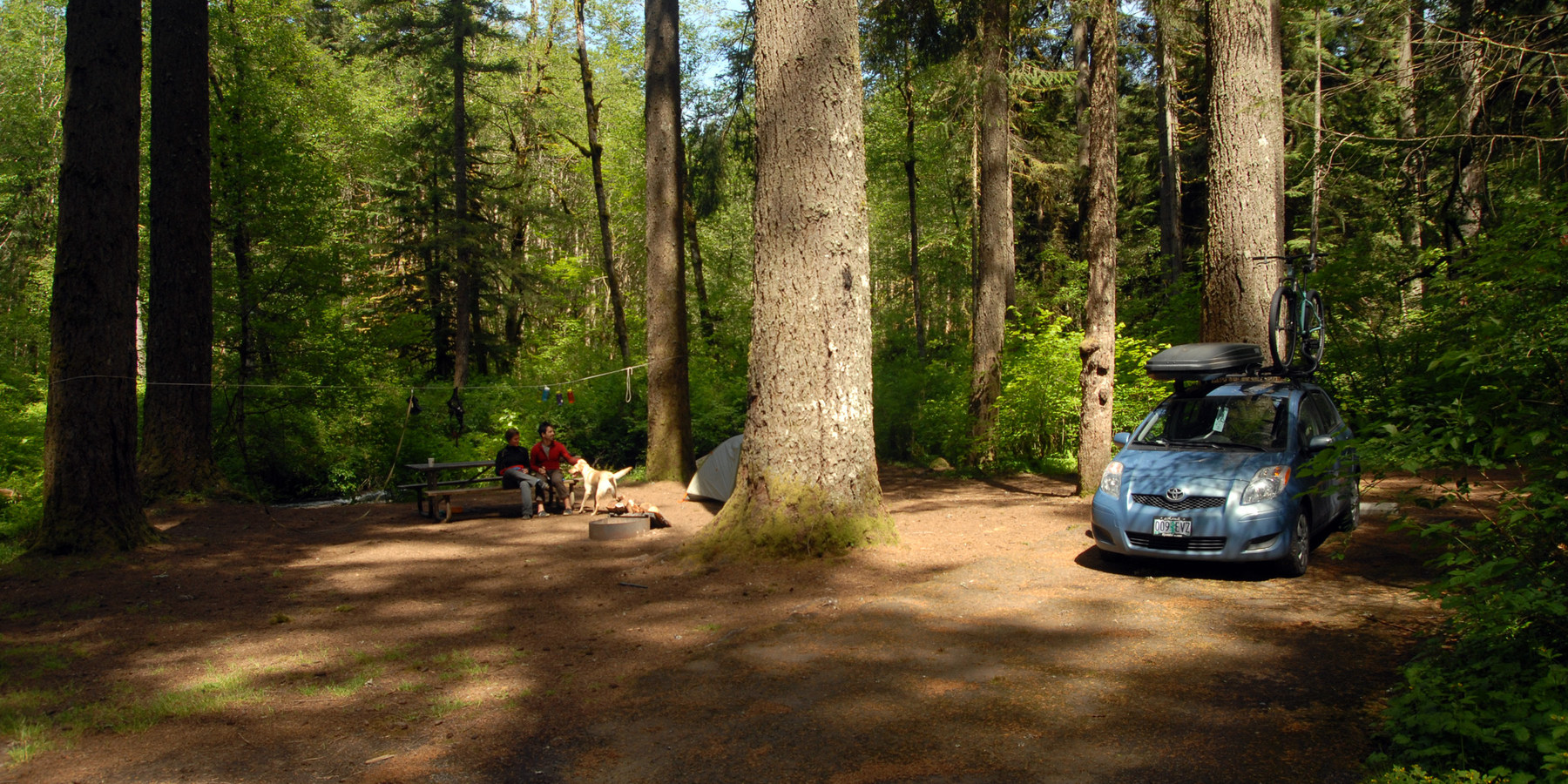 Silver Falls State Park Campground Outdoor Project