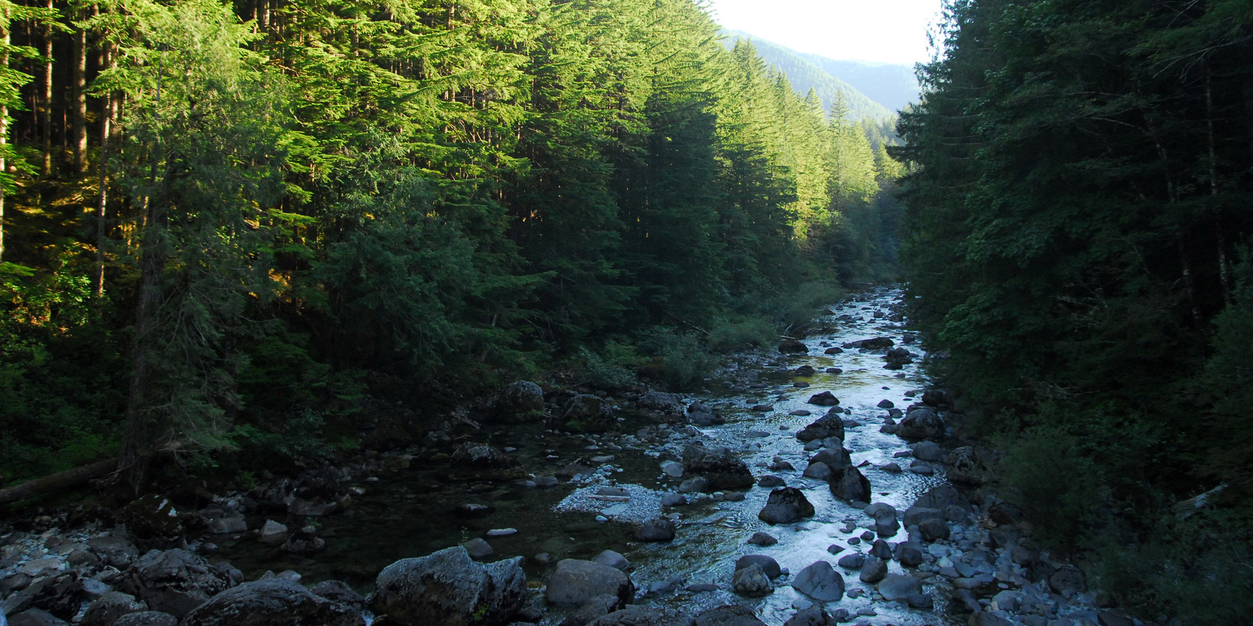 Shady cove cedar creek campground outdoor project for Cedar creek