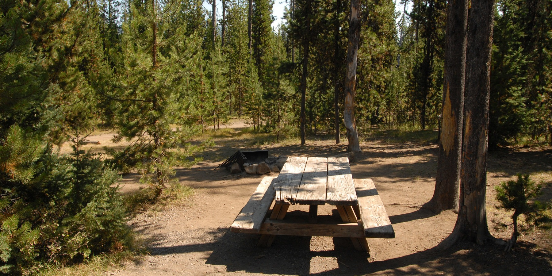 Lava Lake Campground   Outdoor Project