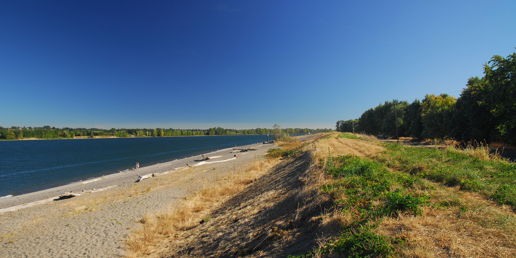 Collins Beach Sauvie Island Portland