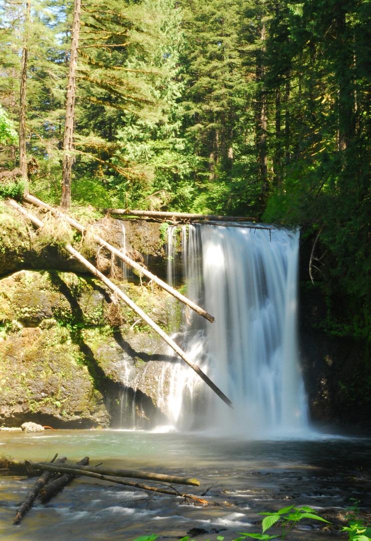 Hiking in portland oregon - 2 part 7