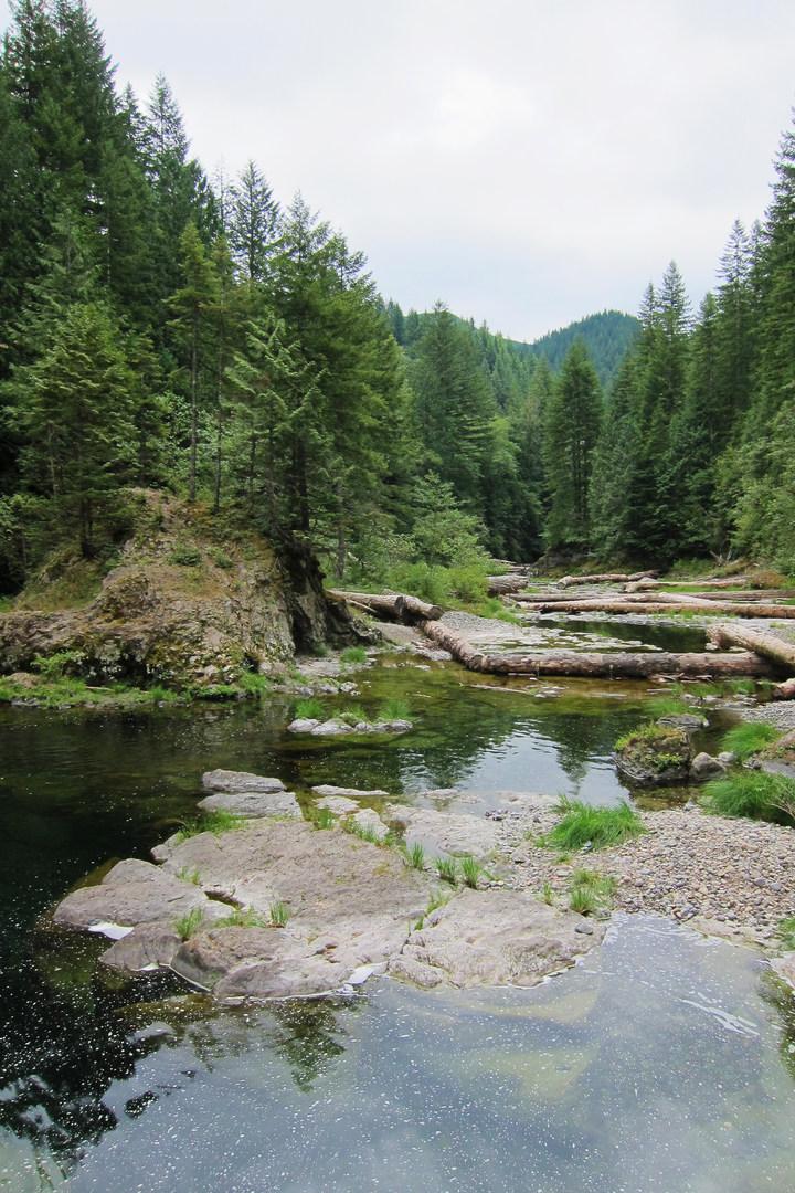 11 of the Best Swimming Holes in Southwest Washington