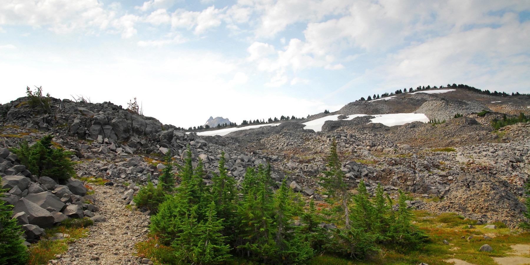 Jefferson Park Hike Via Park Ridge Outdoor Project