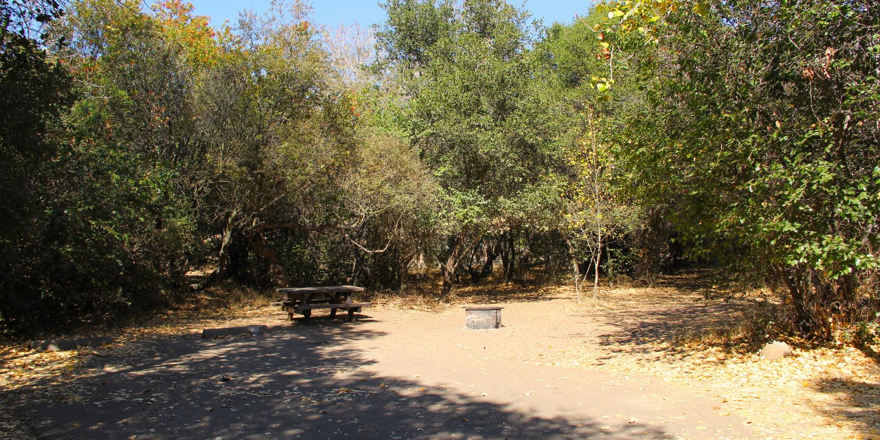 El Capitan State Beach A Campsite On Loop 1 28