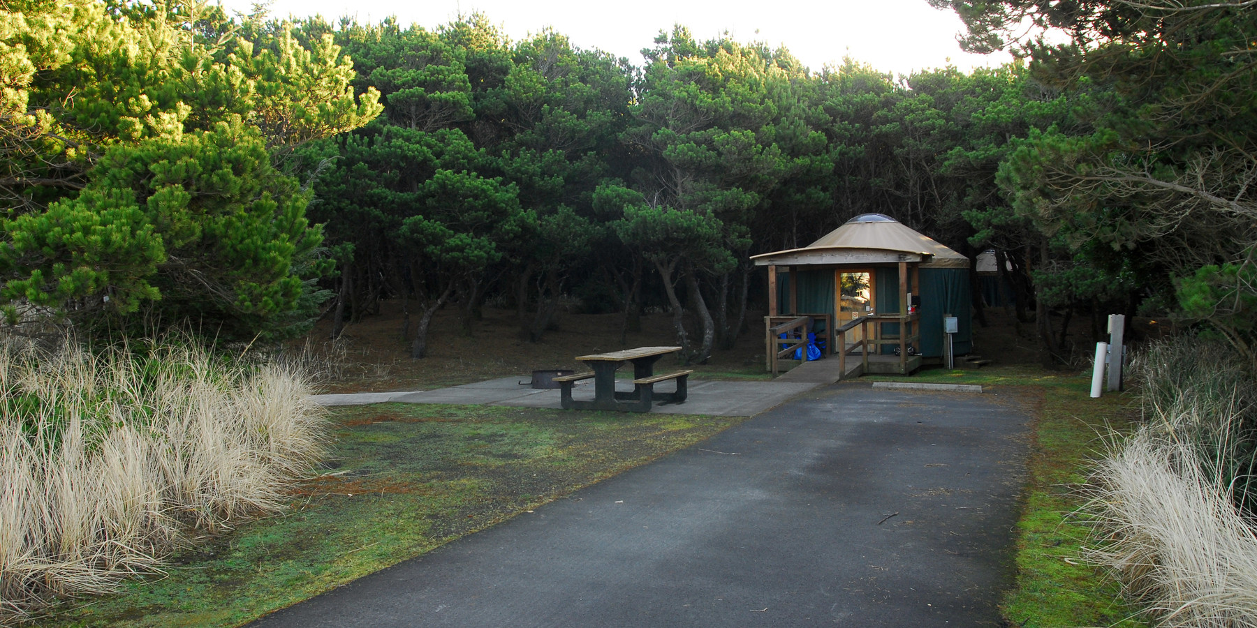 Grayland Beach State Park Campground Outdoor Project