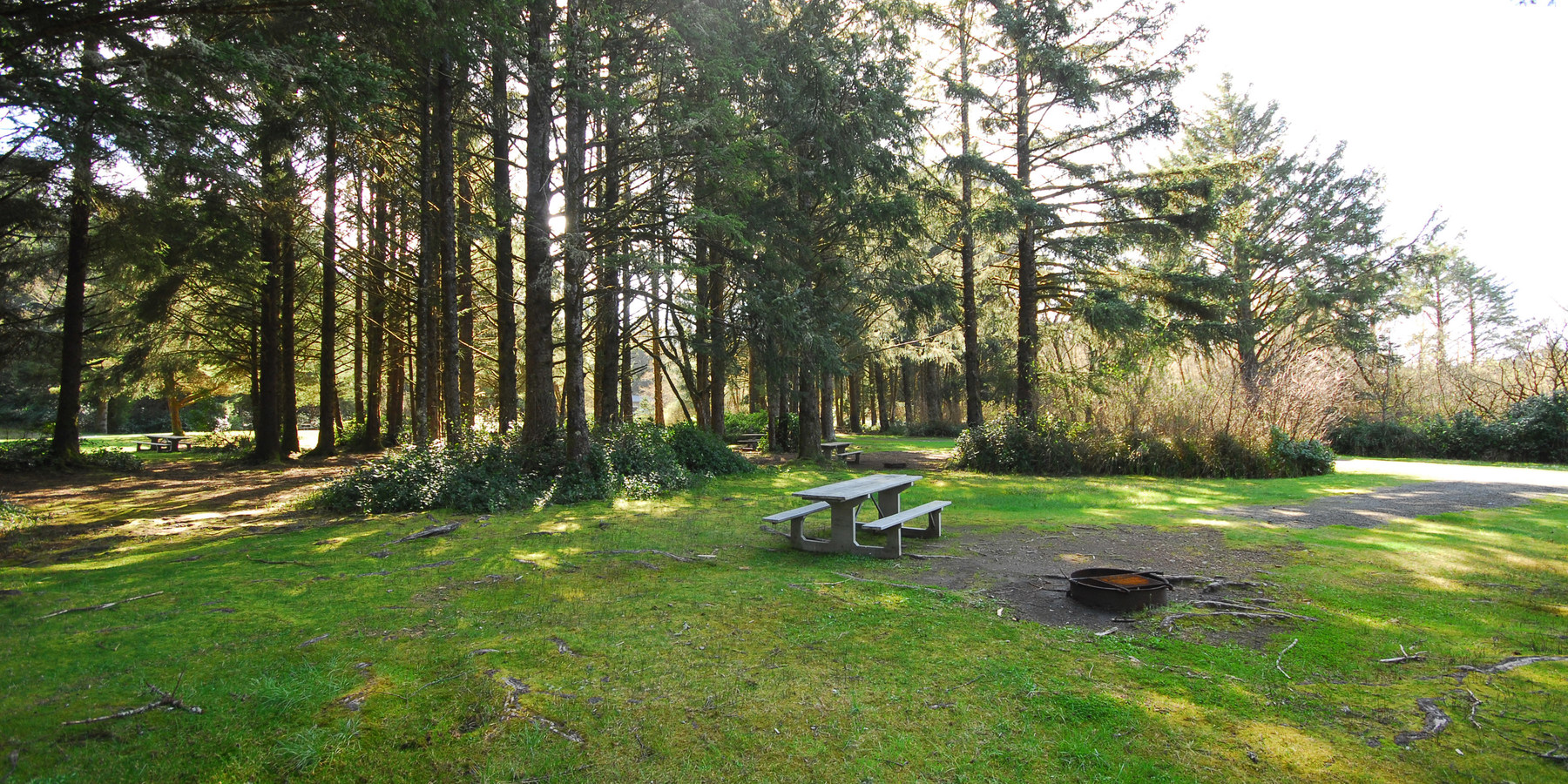 Ocean city state park campground outdoor project for Washington state park cabins