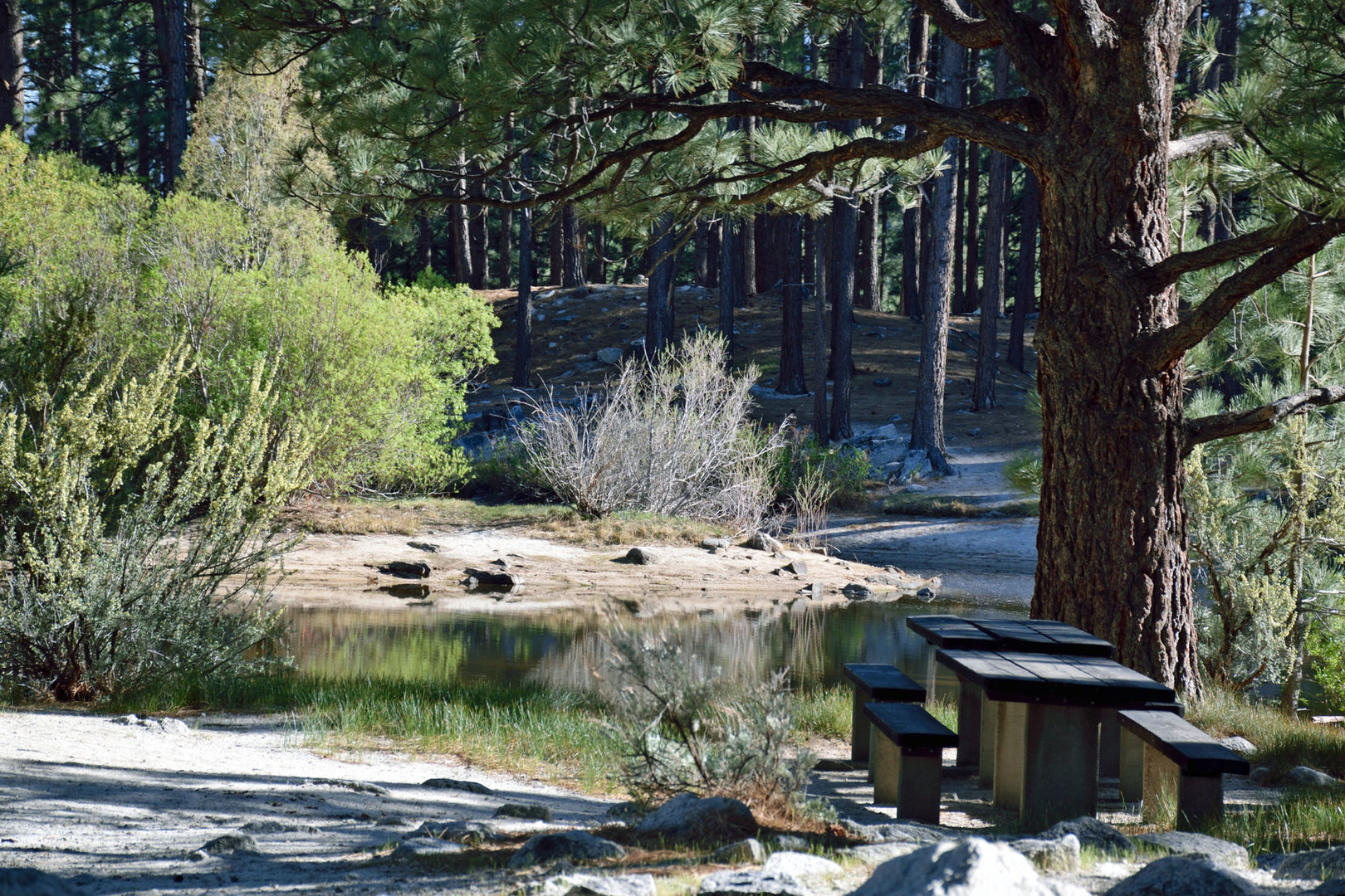99 Store Near Me >> Davis Creek Campground | Outdoor Project