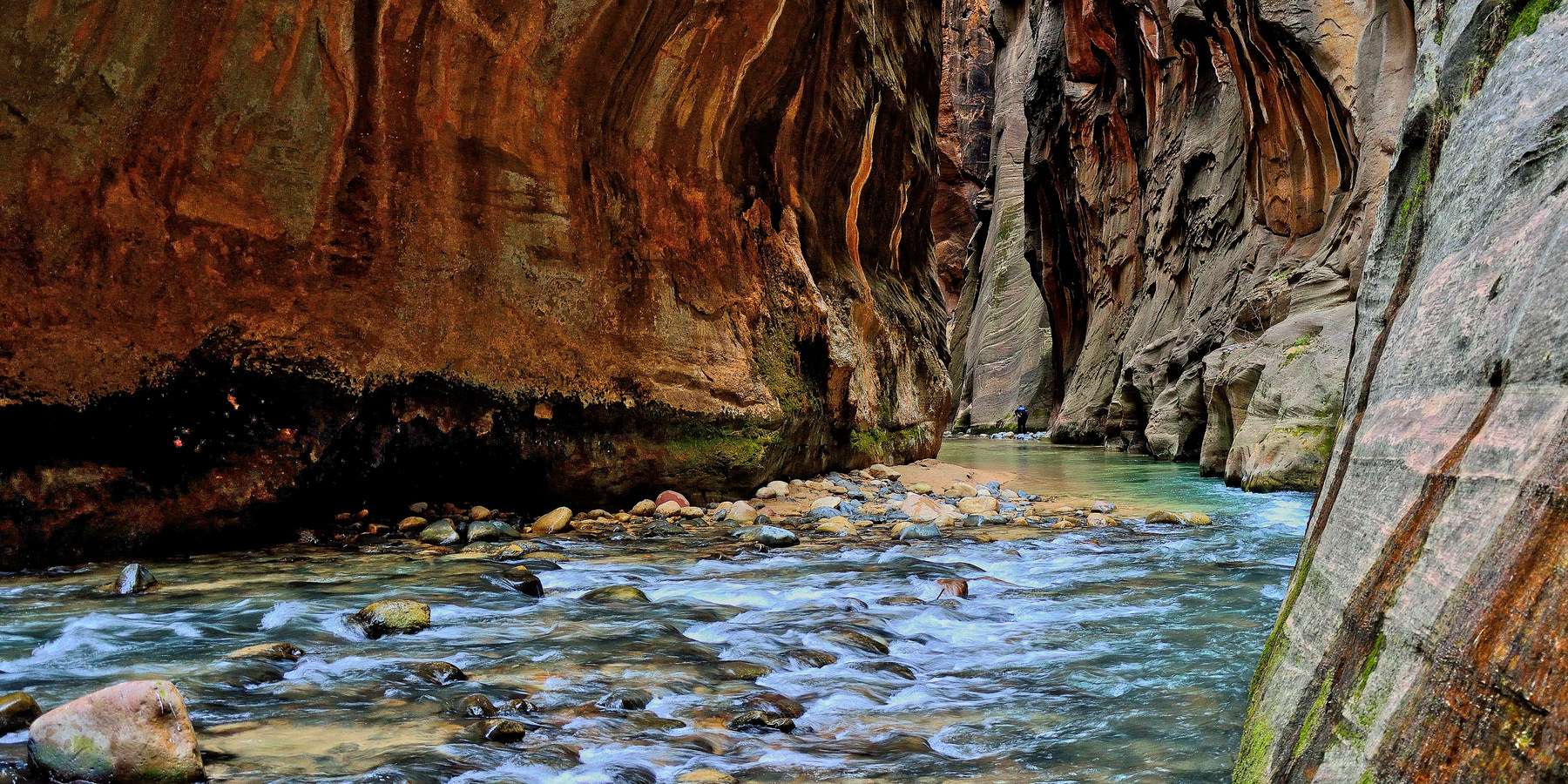 zion national park map and guide