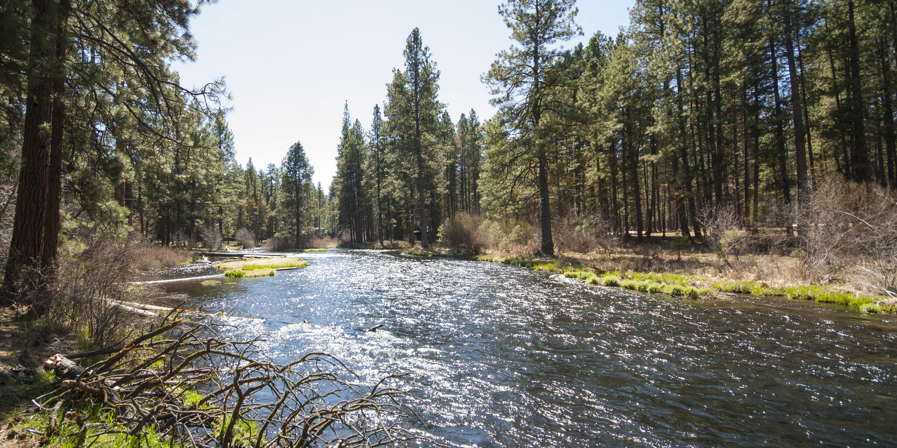 camp sherman dating site Stay in immaculate vintage cabins located under majestic ponderosa pines right on the banks of the metolius river, near sisters, in central oregon call 800-595-6290 for reservations.