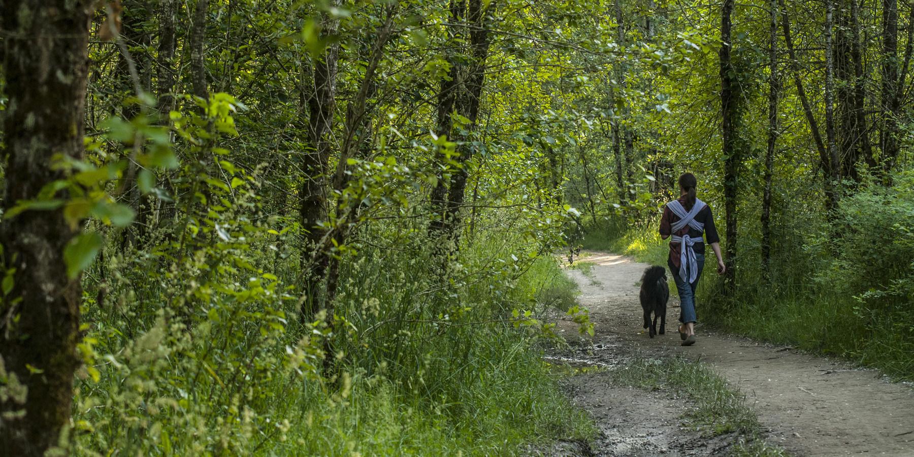 Oregon Thousand Acre Dog Park