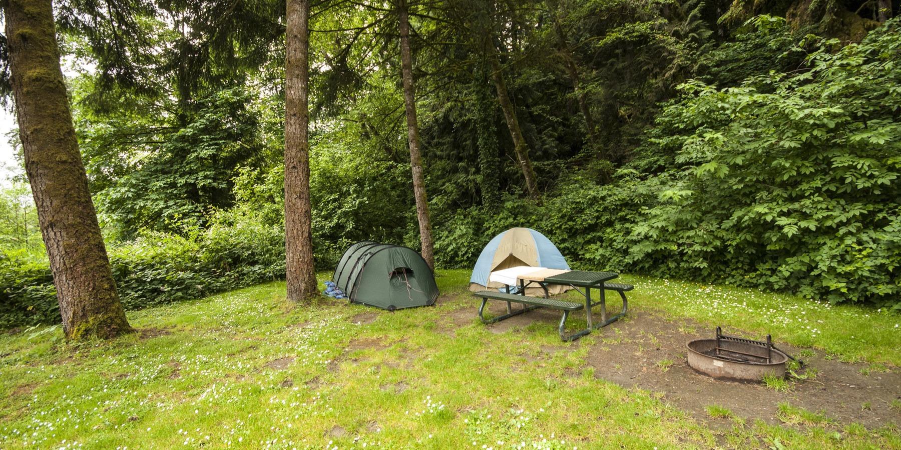 John Macdonald Memorial Campground Tolt Macdonald Park