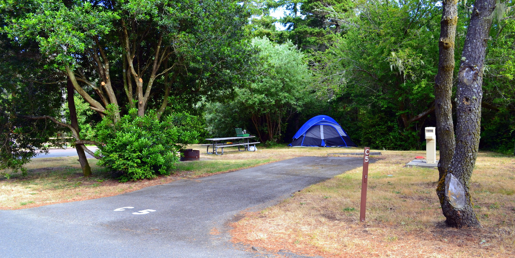 Bullards Beach State Park Campground Outdoor Project