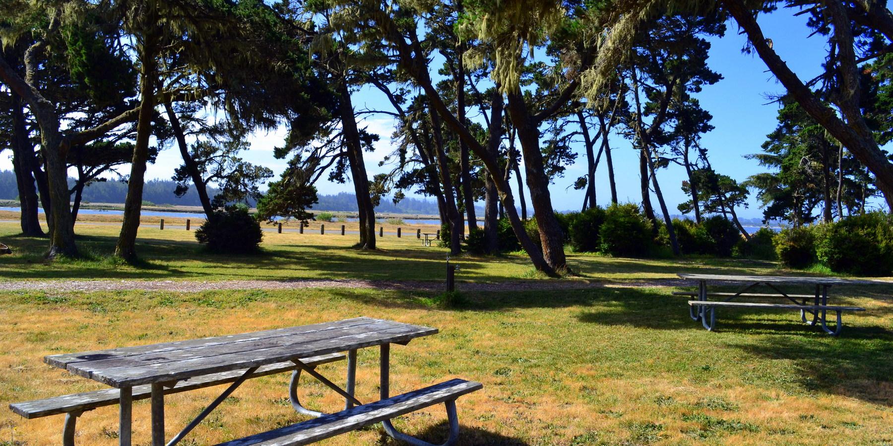 Image Result For Bullards Beach State Park