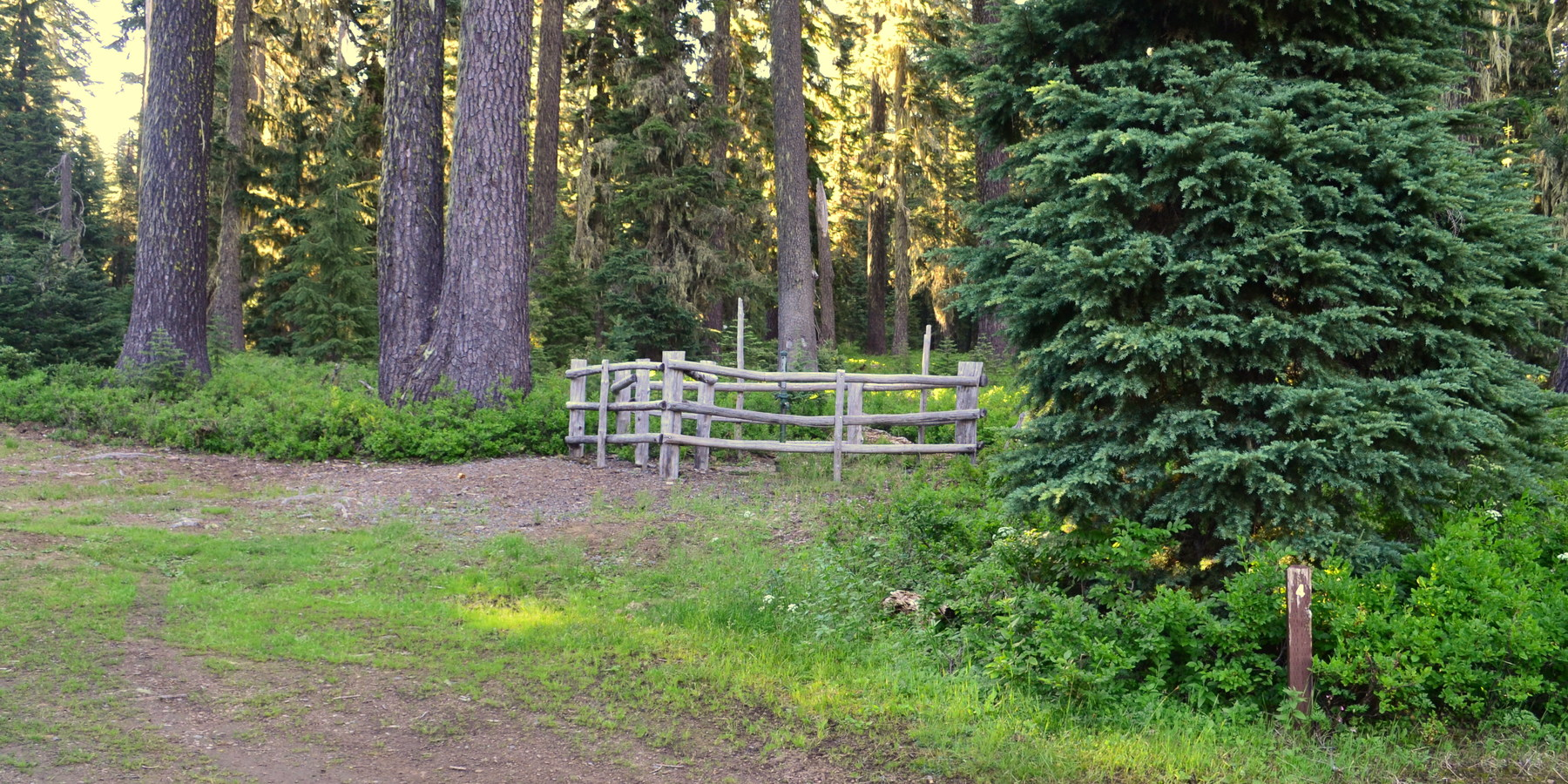 Huckleberry Mountain Campground | Outdoor Project