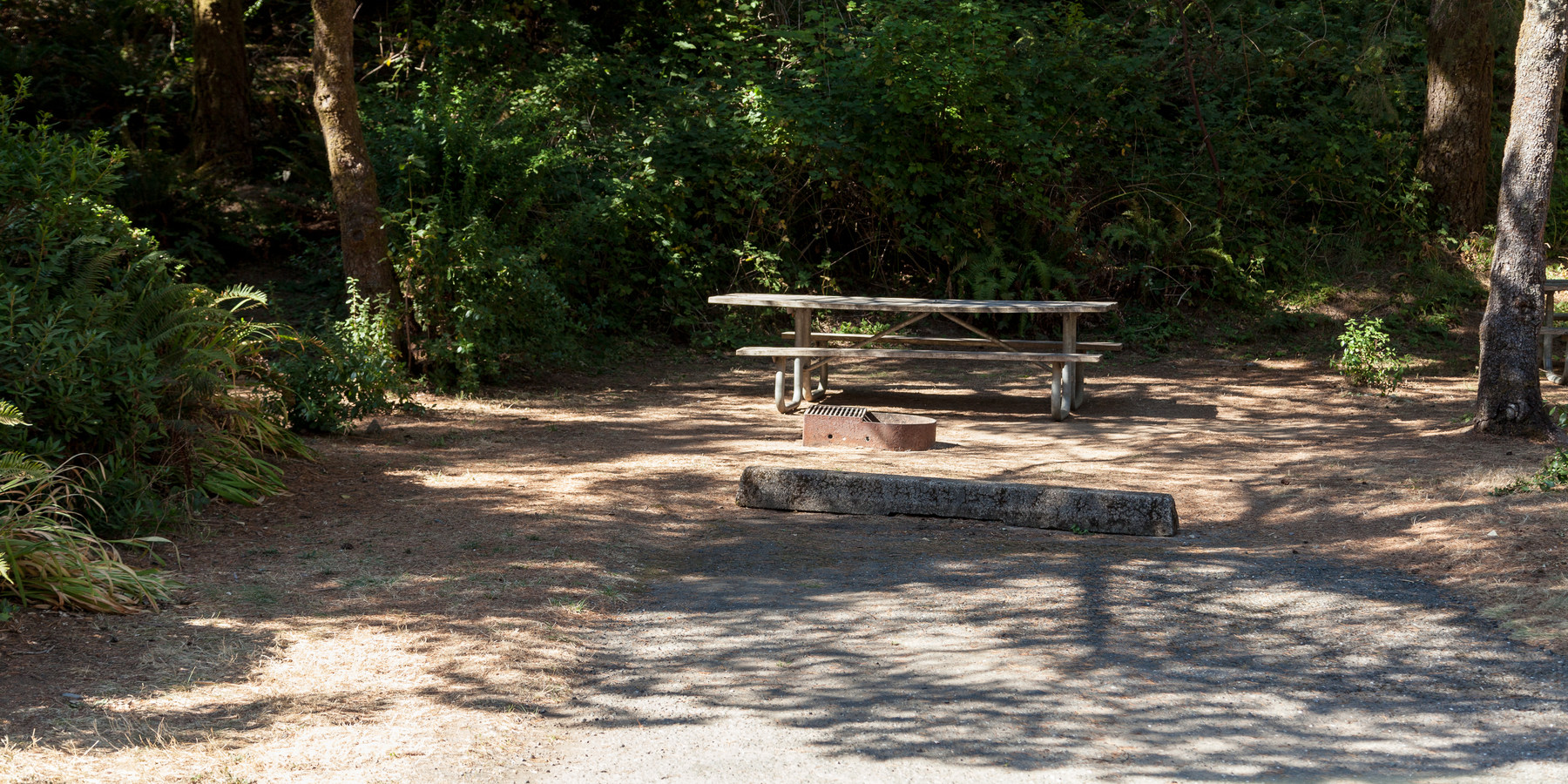 Humbug Mountain State Park Campground Camping In Oregon