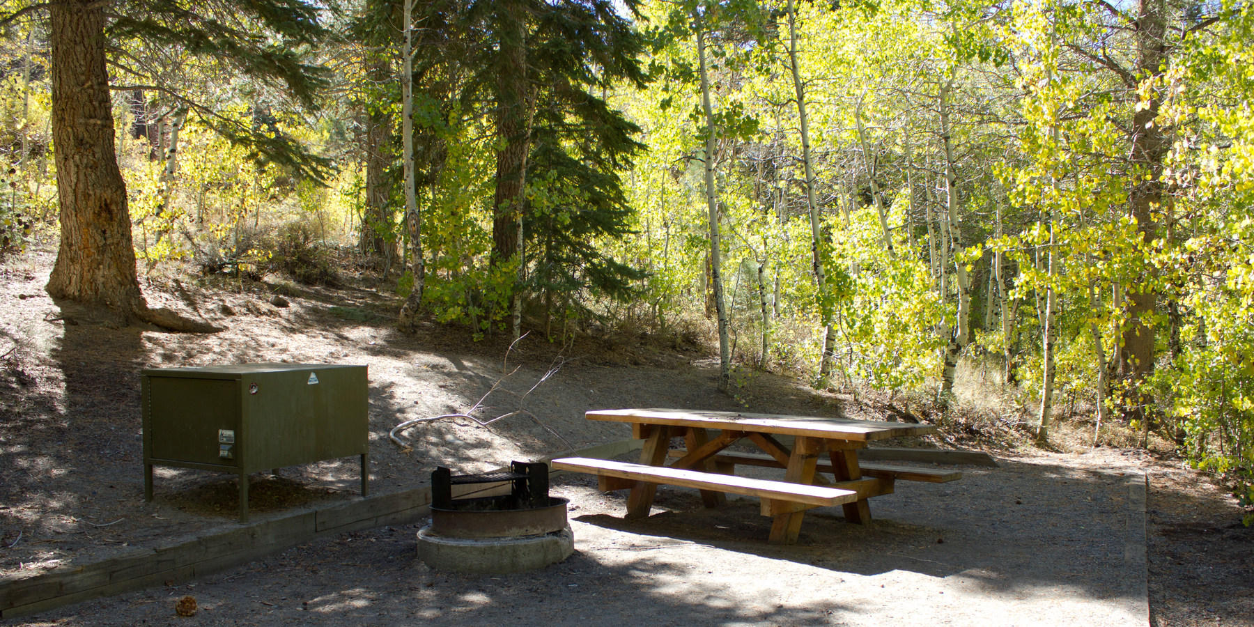 gull lake campground outdoor project