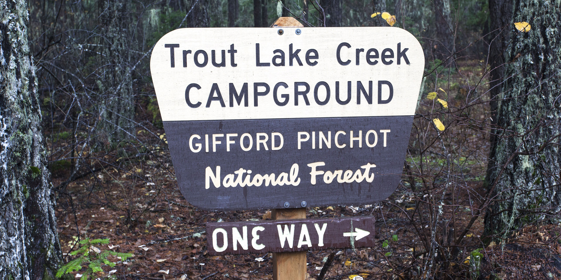 Trout Lake Creek Campground Outdoor Project