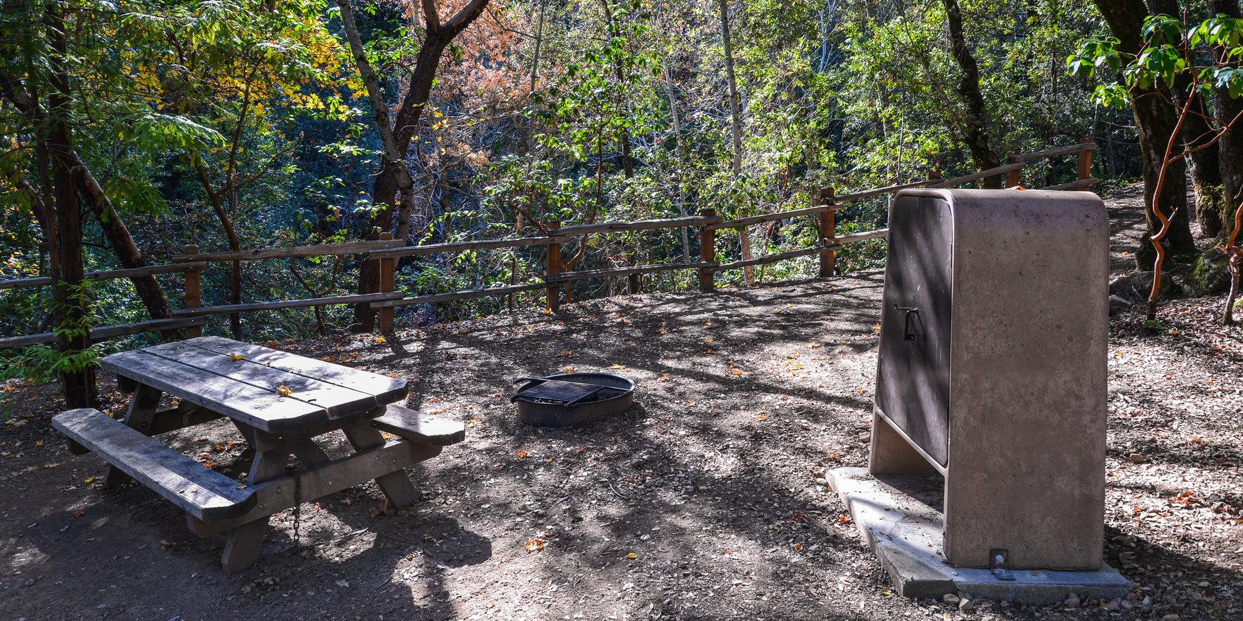 Uvas Canyon County Park Campground | Outdoor Project