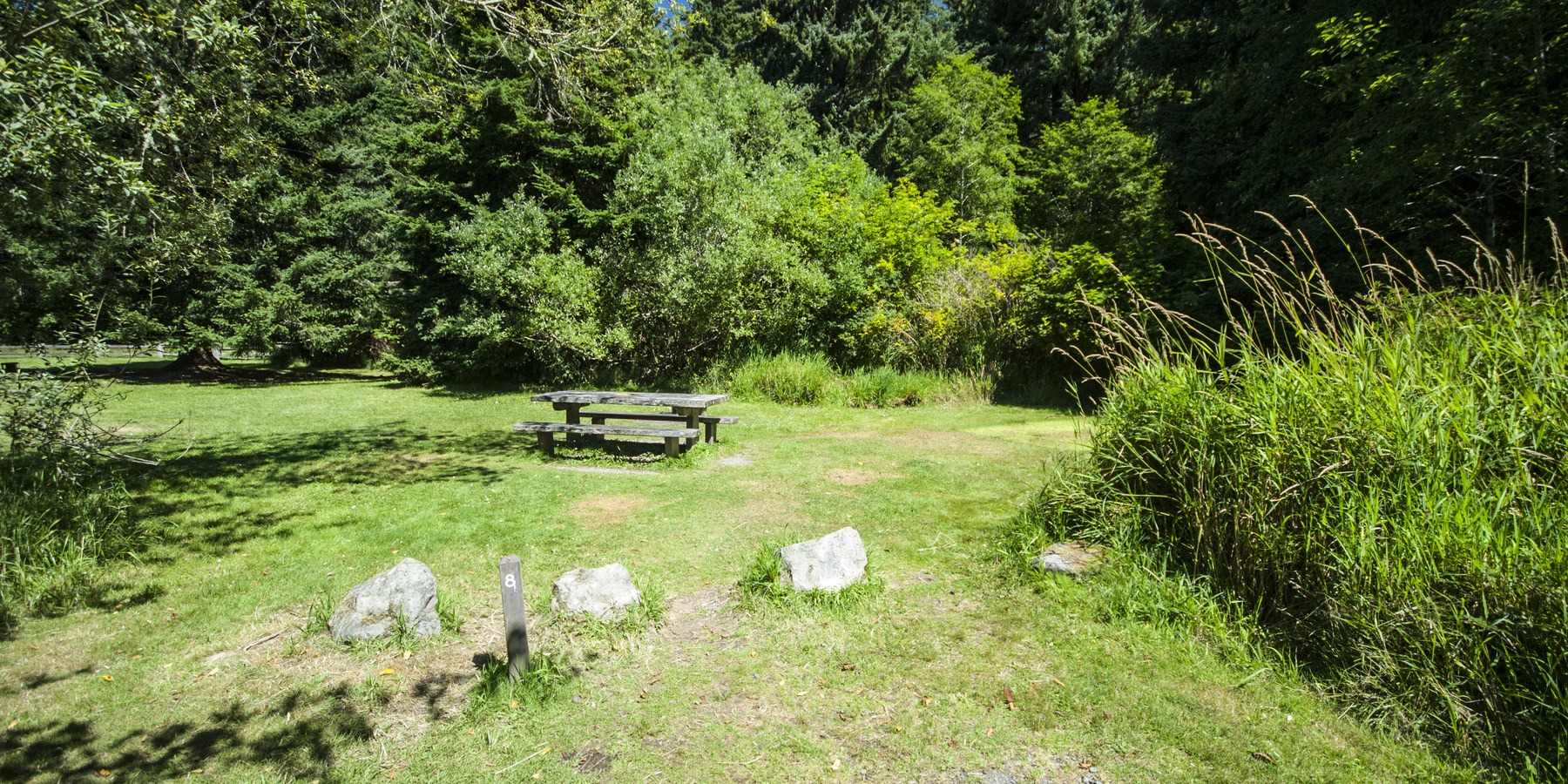 Ozette Campground | Outdoor Project