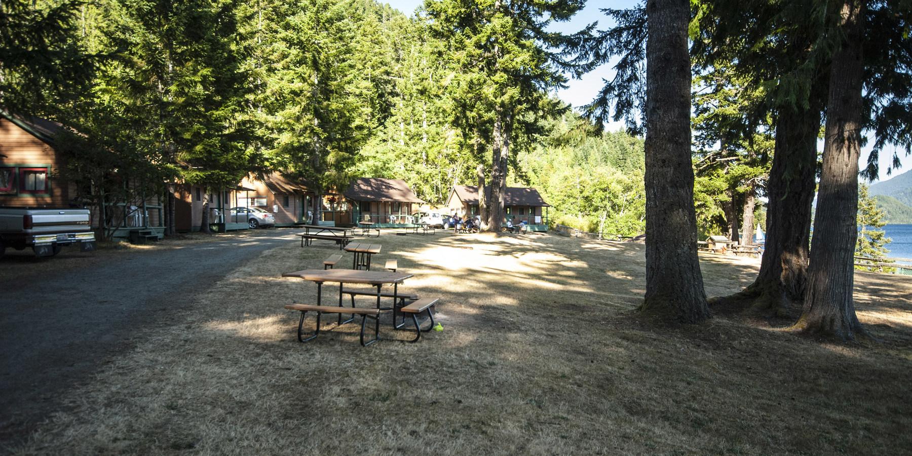 Log cabin resort olympic national park lodging in for Log cabin resorts