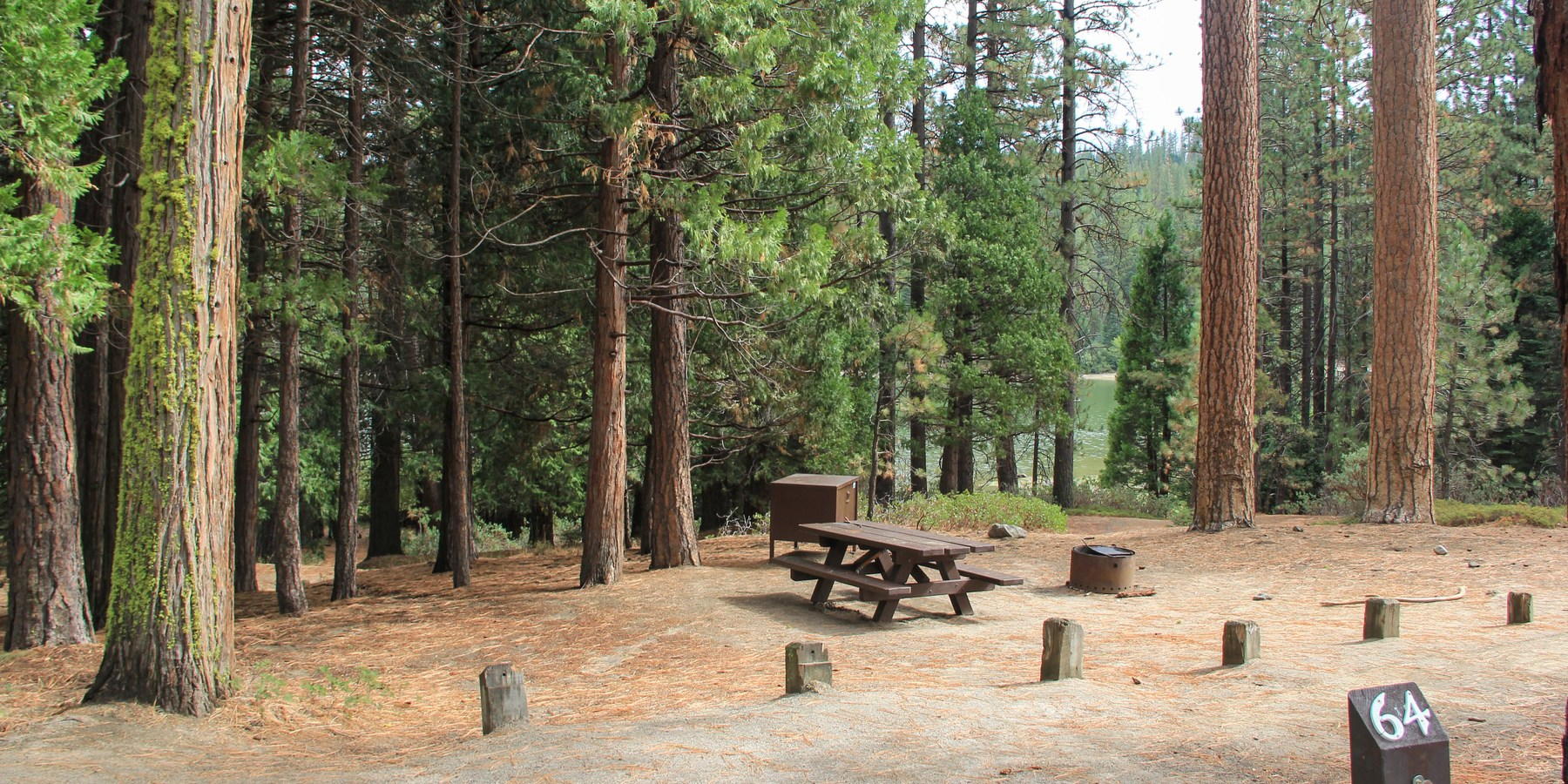 Hume lake campground outdoor project for Public fishing spots near me