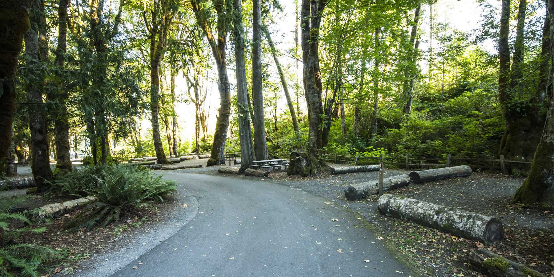 Potlatch state park campground outdoor project for Washington state park cabins