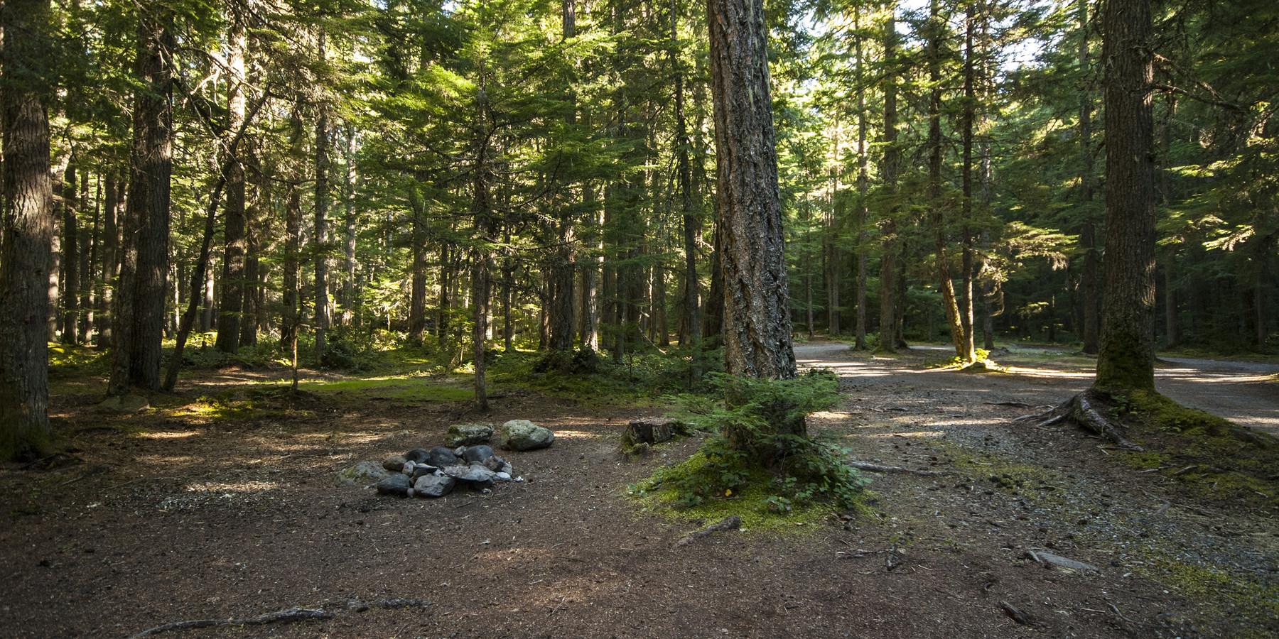 Buck Creek Campsites At Ranger Creek Airstrip Outdoor