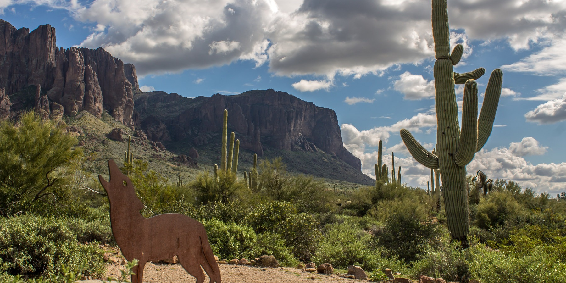 Lost Dutchman State Park Campground Camping In Arizona