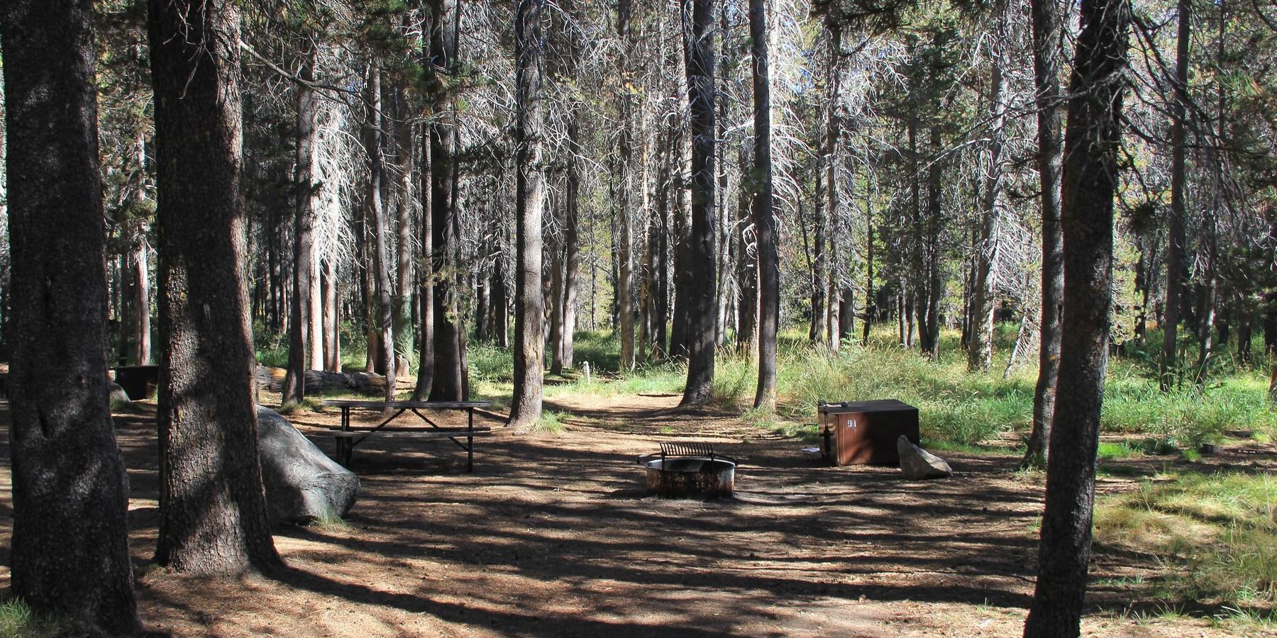 Bridalveil creek campground yosemite national park for Yosemite park camping cabins