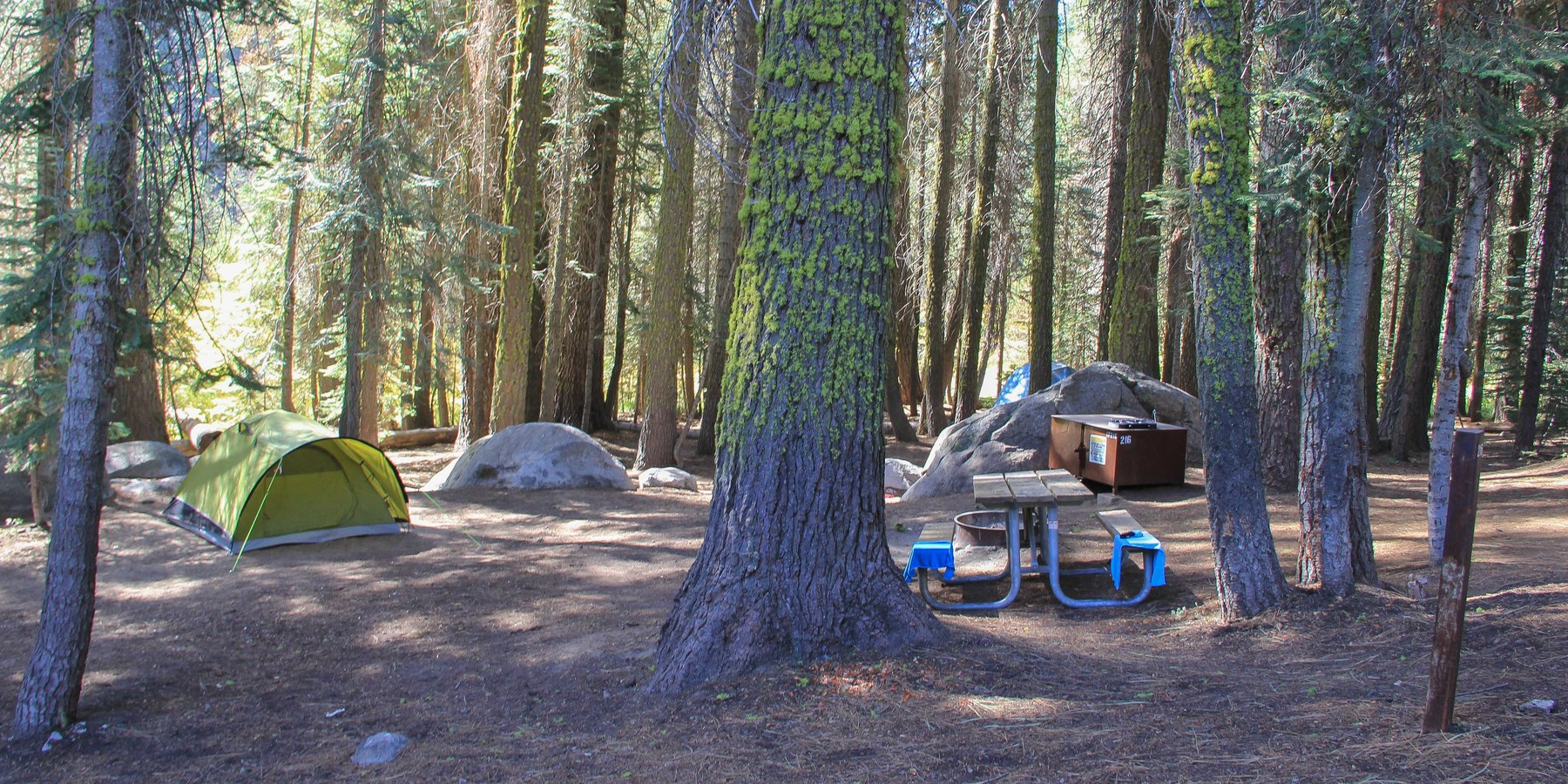 Crane Flat Campground Outdoor Project