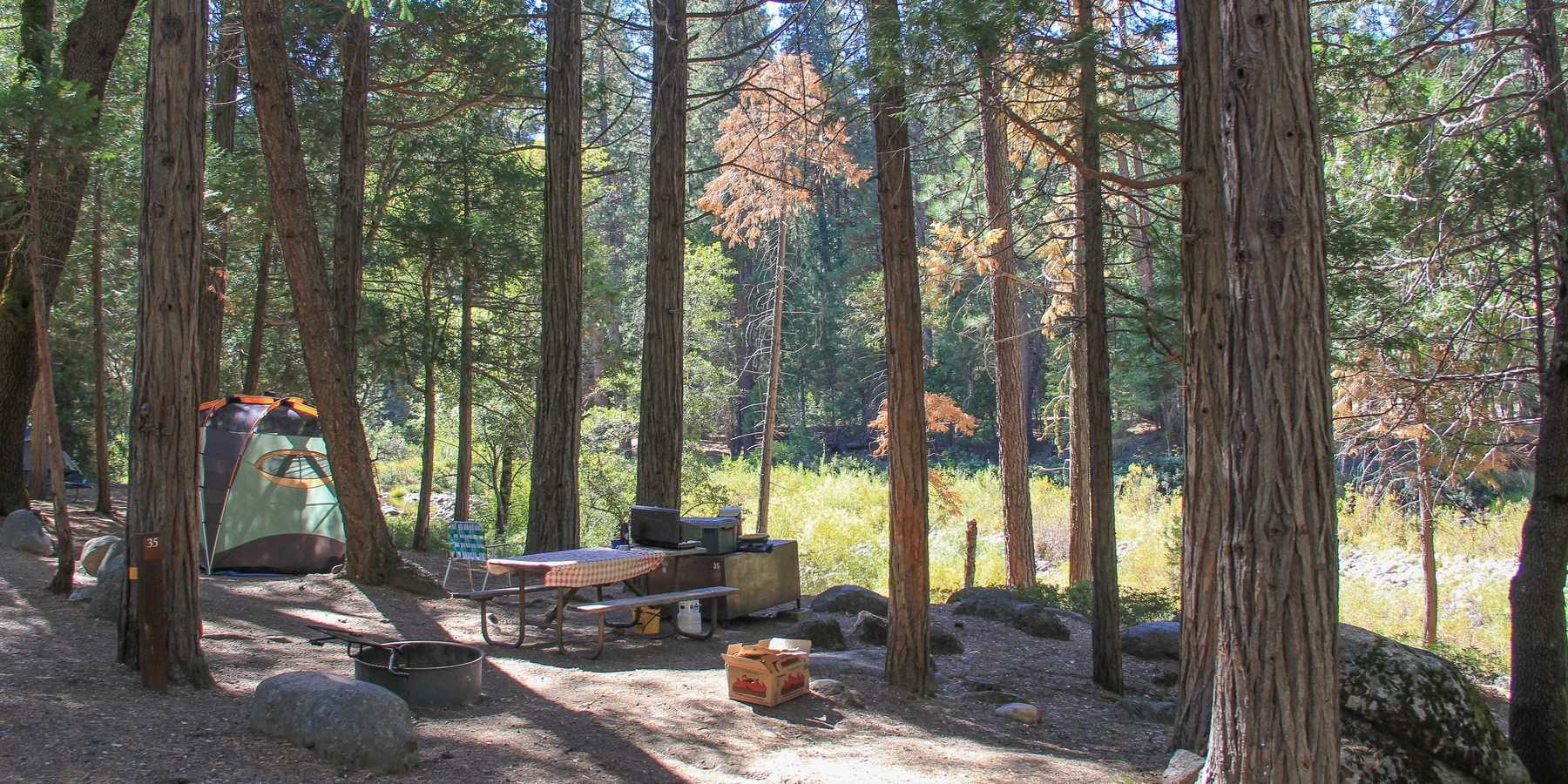 Wawona Campground Outdoor Project
