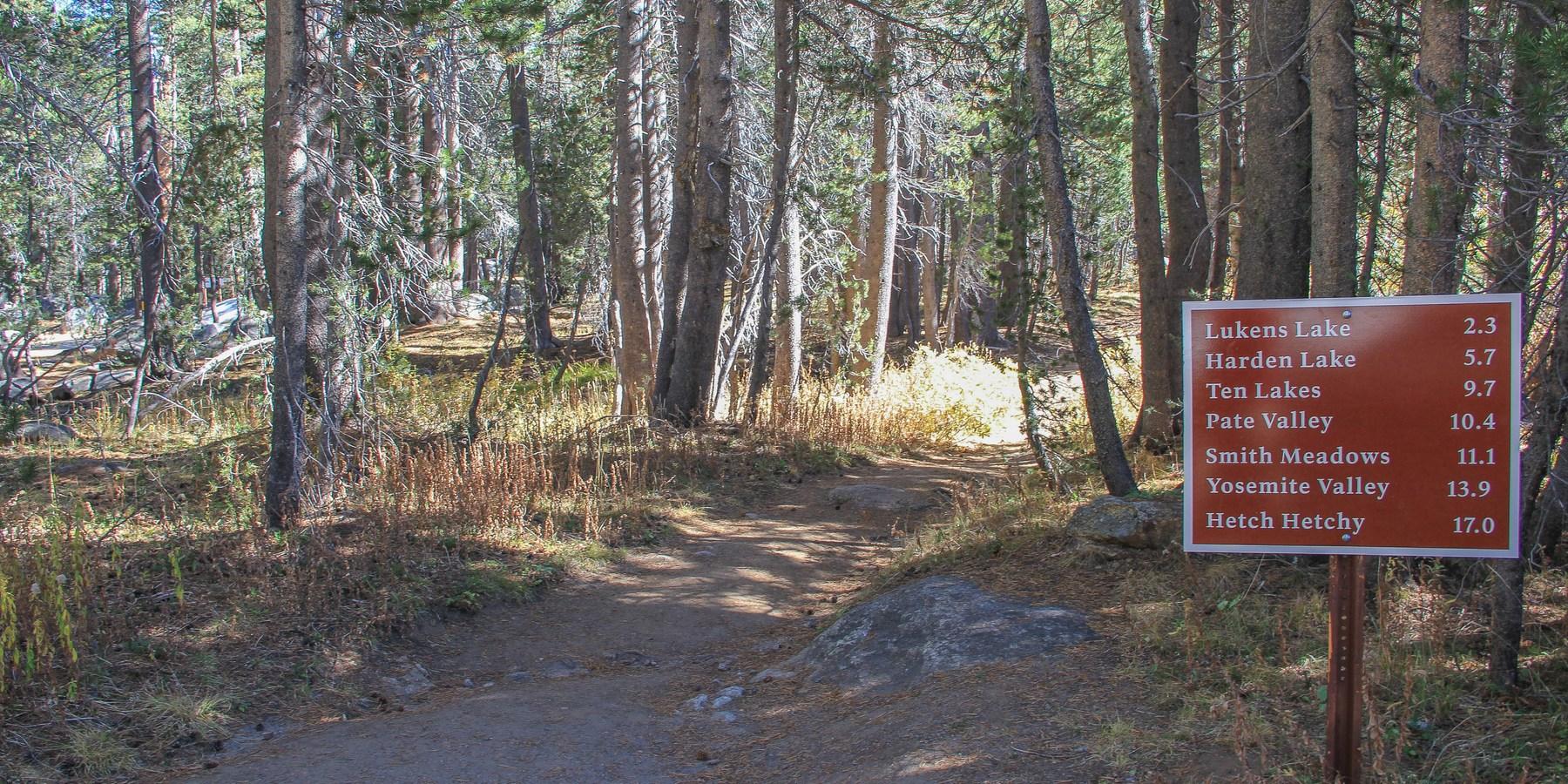 White wolf campground yosemite national park camping for Yosemite park camping cabins